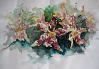 """orchid 2""- watercolor on paper (2009)"
